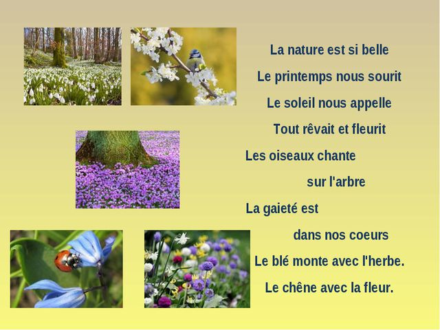 La nature est si belle Le printemps nous sourit Le soleil nous appelle Tout r...