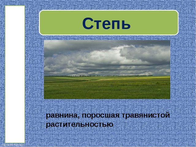 РАСТИТЕЛЬНОСТЬ ковыль тюльпан вишня степная синяк FokinaLida.75@mail.ru