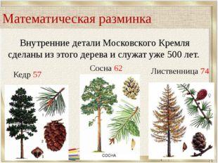 Внутренние детали Московского Кремля сделаны из этого дерева и служат уже 500