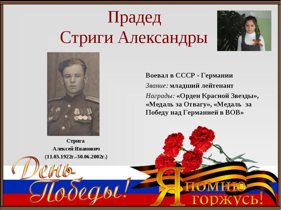 Прадед Стриги Александры Стрига Алексей Иванович (11.03.1922г.-30.06.2002г.)...