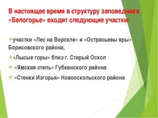 В настоящее время в структуру заповедника «Белогорье» входят следующие участк