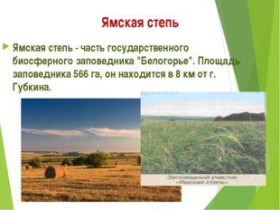 """Ямская степь Ямская степь - часть государственного биосферного заповедника """"Б"""