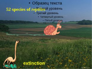 52 species of reptiles extinction
