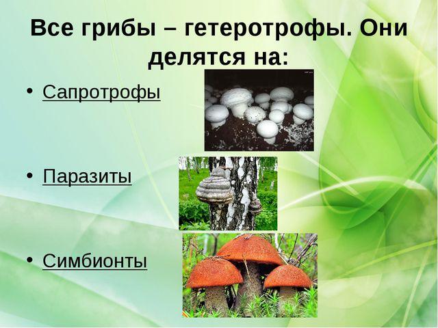 Все грибы – гетеротрофы. Они делятся на: Сапротрофы Паразиты Симбионты