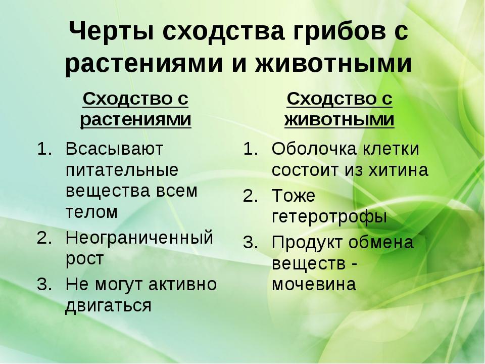 Черты сходства грибов с растениями и животными Сходство с растениямиСходство...