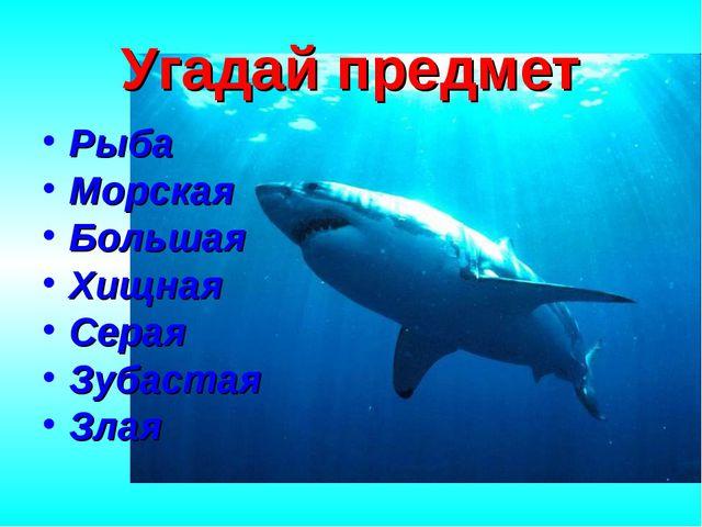 Угадай предмет Рыба Морская Большая Хищная Серая Зубастая Злая