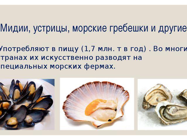 Мидии, устрицы, морские гребешки и другие Употребляют в пищу (1,7 млн. т в го...