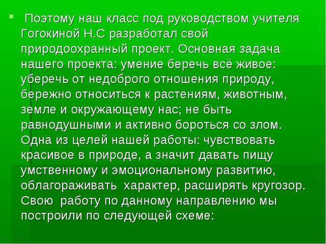 Поэтому наш класс под руководством учителя Гогокиной Н.С разработал свой при...