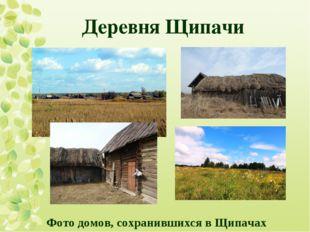 Деревня Щипачи Фото домов, сохранившихся в Щипачах
