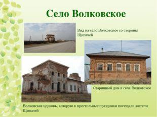 Село Волковское  Вид на село Волковское со стороны Щипачей Старинный дом в с