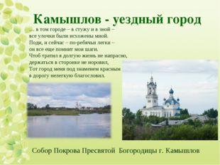 Камышлов - уездный город  Собор Покрова Пресвятой Богородицы г. Камышлов … в
