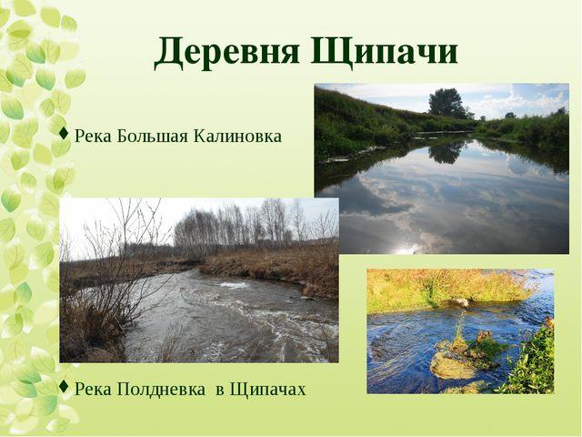 Деревня Щипачи Река Большая Калиновка Река Полдневка в Щипачах