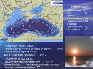 Наибольшая глубина 2212м Наибольшее расстояние от берега до берега 1200м Прот