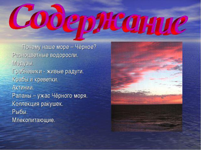 Почему наше море – Чёрное? Разноцветные водоросли. Медузы. Гребневики - живые...