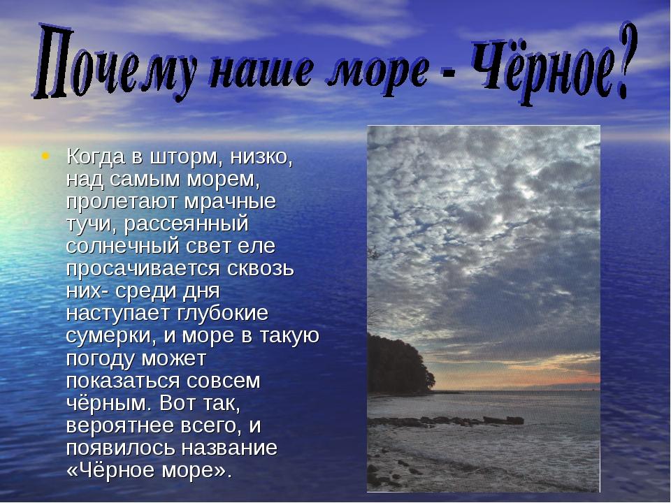 Когда в шторм, низко, над самым морем, пролетают мрачные тучи, рассеянный сол...