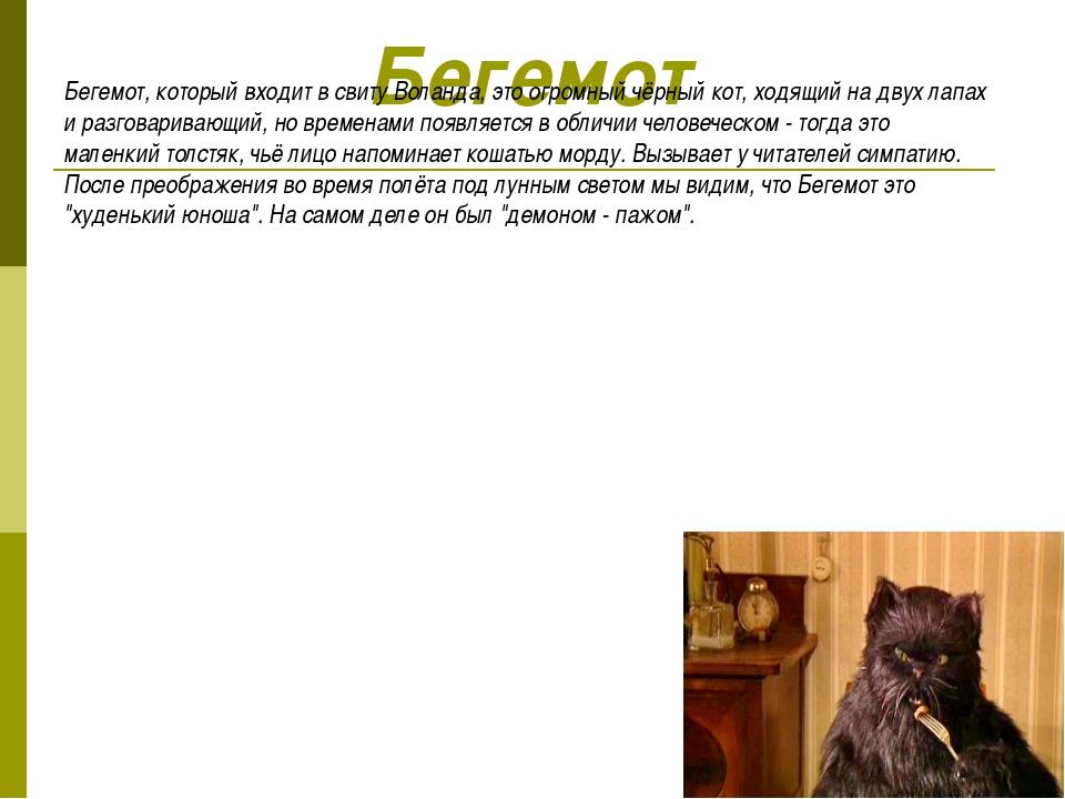 Бегемот Бегемот, который входит в свиту Воланда, это огромный чёрный кот, ход...