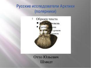 Русские исследователи Арктики (полярники) Отто Юльевич Шмидт