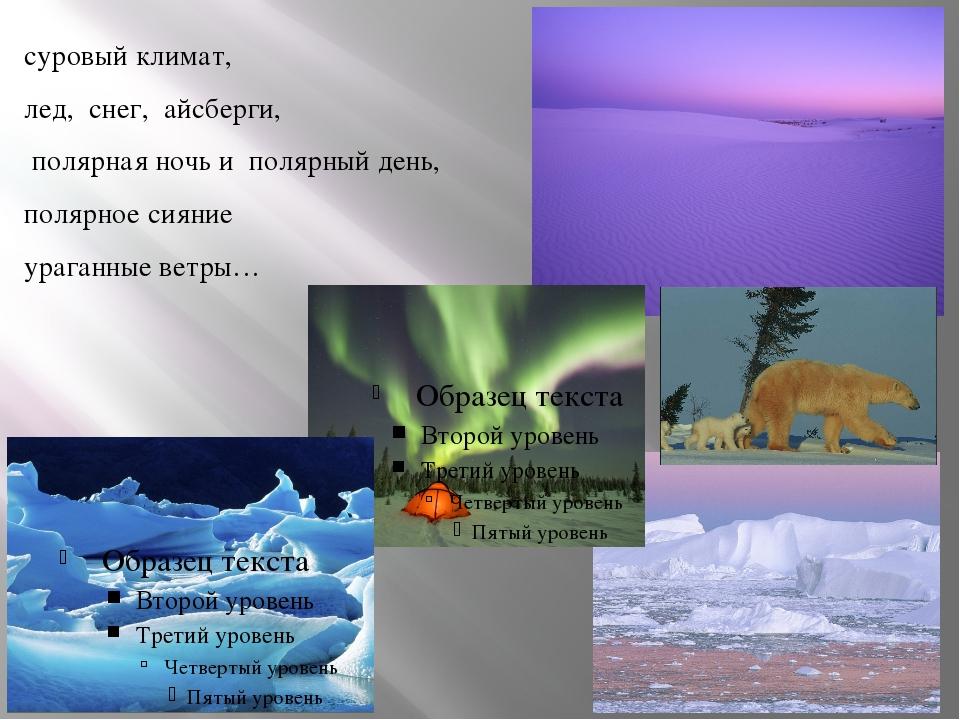 суровый климат, лед, снег, айсберги, полярная ночь и полярный день, полярное...