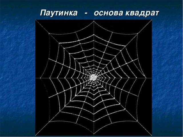 Паутинка - основа квадрат
