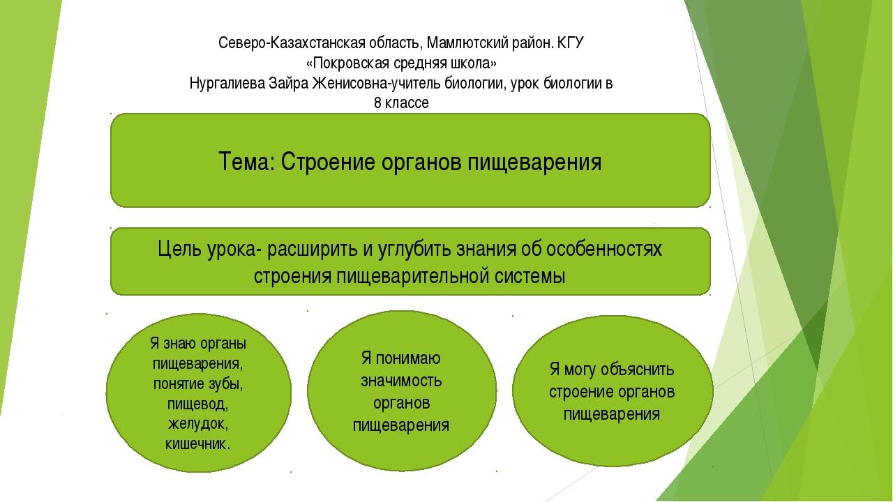Северо-Казахстанская область, Мамлютский район. КГУ «Покровская средняя школ...
