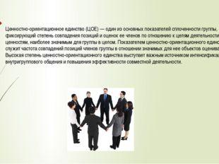 Ценностно-ориентационное единство (ЦОЕ) — один из основных показателей сплоче