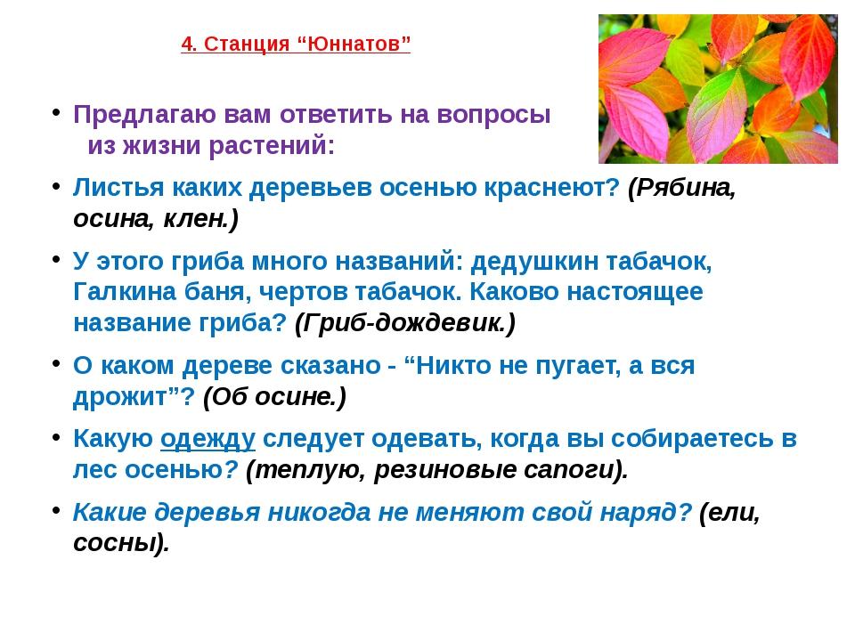 """4. Станция """"Юннатов"""" Предлагаю вам ответить на вопросы из жизни растений: Ли..."""