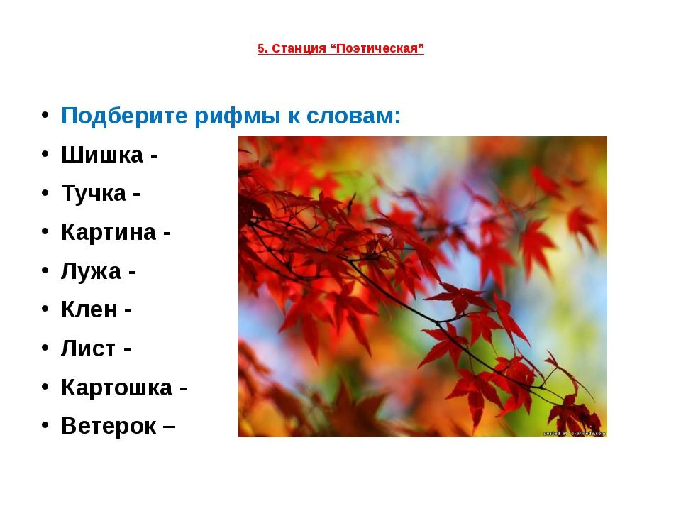 """5. Станция """"Поэтическая"""" Подберите рифмы к словам: Шишка - Тучка - Картина -..."""