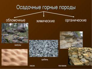 Осадочные горные породы обломочные химические органические