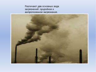 Различают два основных вида загрязнений: природное и антропогенное загрязнения.