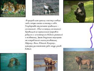 -В природе нет границ и только сообща люди могут спасти планету и себя. Госуд