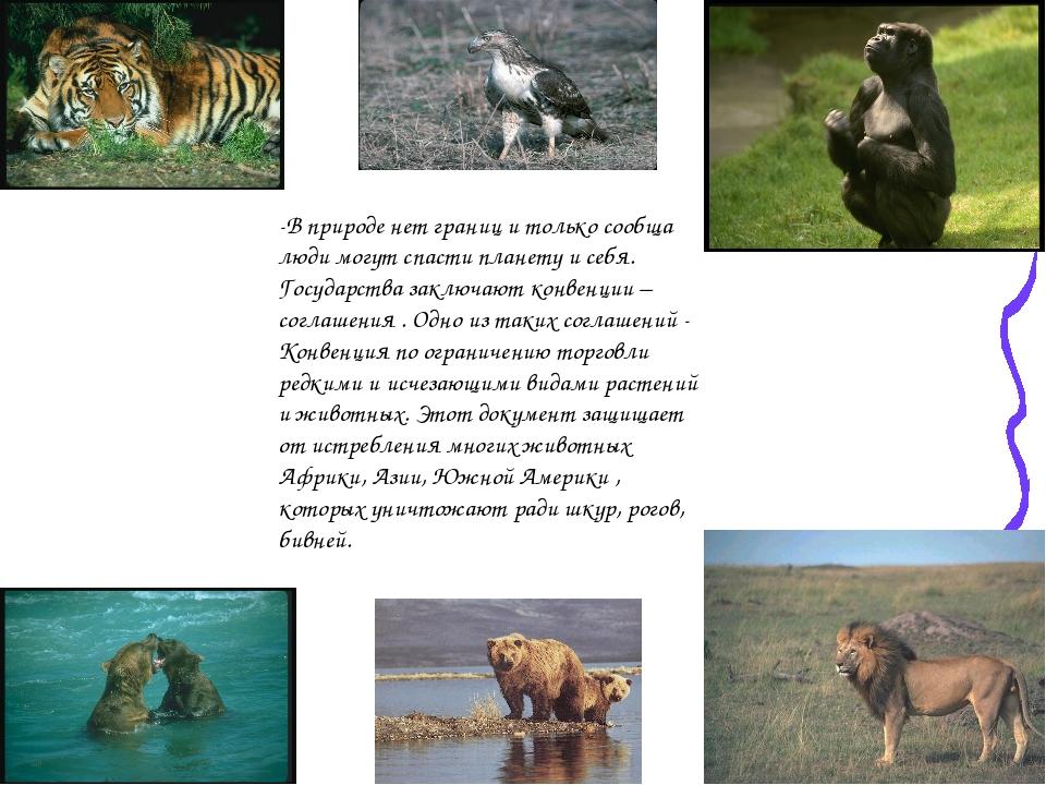 -В природе нет границ и только сообща люди могут спасти планету и себя. Госуд...