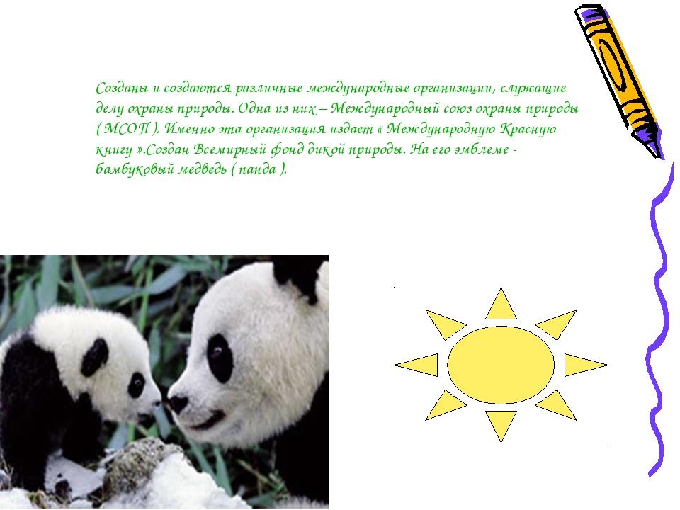Созданы и создаются различные международные организации, служащие делу охраны...