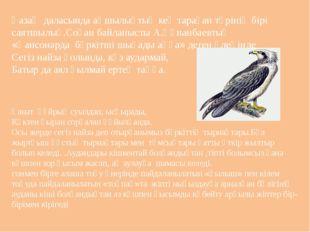 Қазақ даласында аңшылықтың кең тараған түрінің бірі саятшылық.Соған байланыст