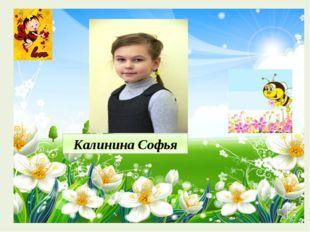 Калинина Софья