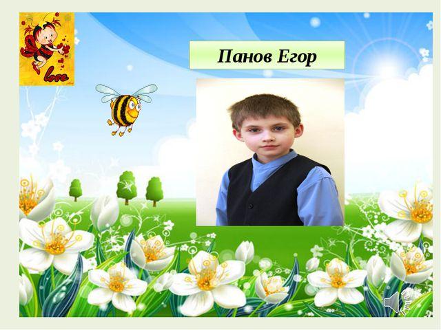 Панов Егор