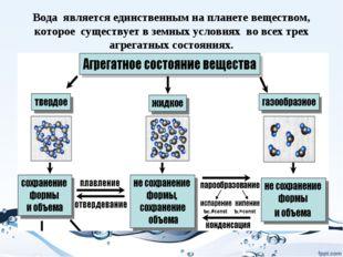 Вода является единственным на планете веществом, которое существует в земных
