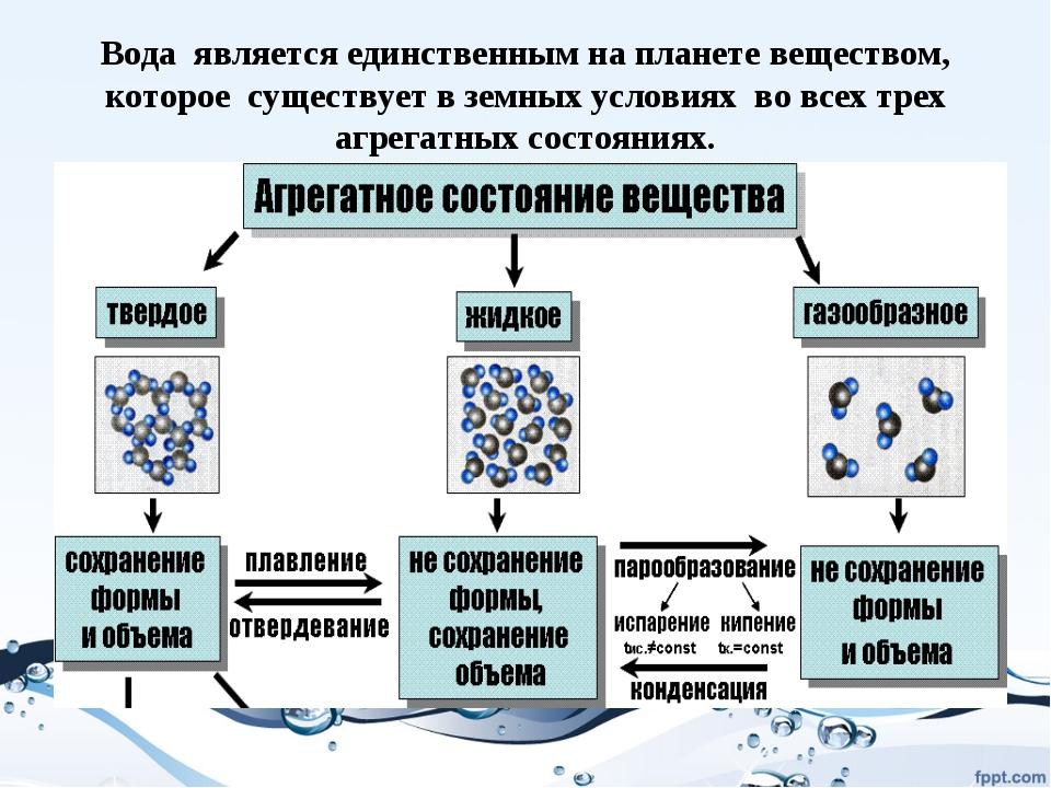 Вода является единственным на планете веществом, которое существует в земных...