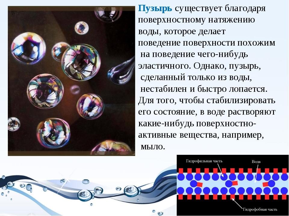 Пузырь существует благодаря поверхностному натяжению воды, которое делает пов...
