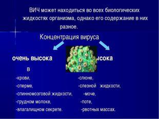 ВИЧ может находиться во всех биологических жидкостях организма, однако его с