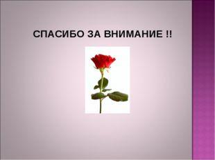 СПАСИБО ЗА ВНИМАНИЕ !!
