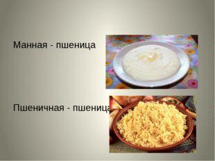 Манная - пшеница Пшеничная - пшеница