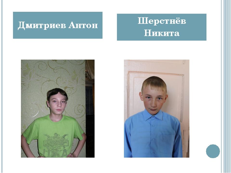 Дмитриев Антон Шерстнёв Никита