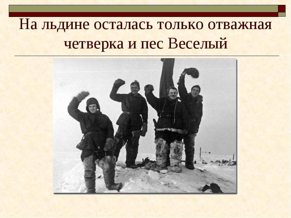 На льдине осталась только отважная четверка и пес Веселый