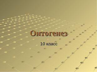Онтогенез 10 класс