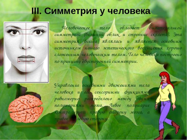 III. Симметрия у человека Человеческое тело обладает билатеральной симметрией...