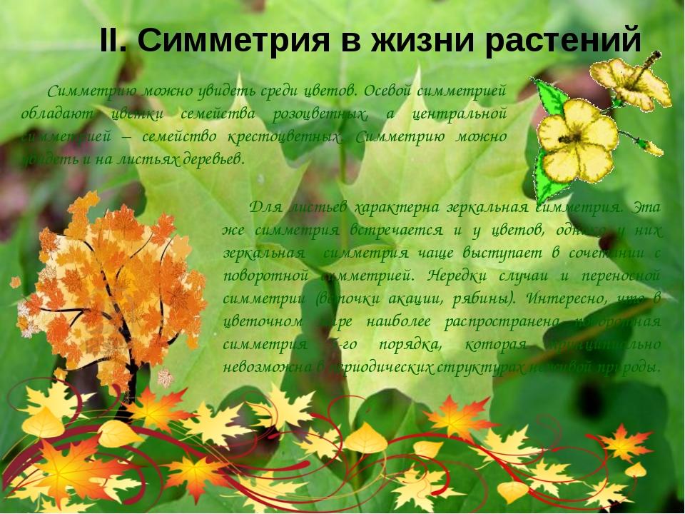 II. Симметрия в жизни растений Симметрию можно увидеть среди цветов. Осевой с...