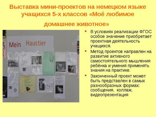 Выставка мини-проектов на немецком языке учащихся 5-х классов «Моё любимое до...