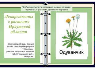 Лекарственные растения Иркутской области Окружающий мир, 4 класс Автор: Шкро
