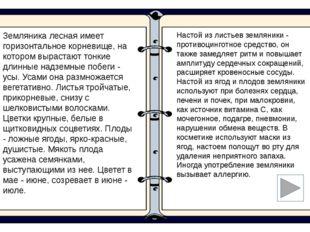 Интернет-ресурсы Берёза - http://zalari.info/narodmed/?id=plants-5 Брусника