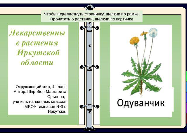 Лекарственные растения Иркутской области Окружающий мир, 4 класс Автор: Шкро...